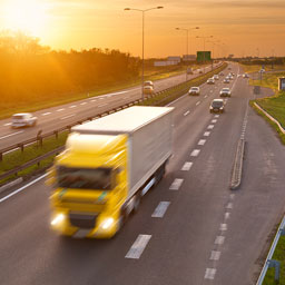 Preview for the Brisbane Truck Show